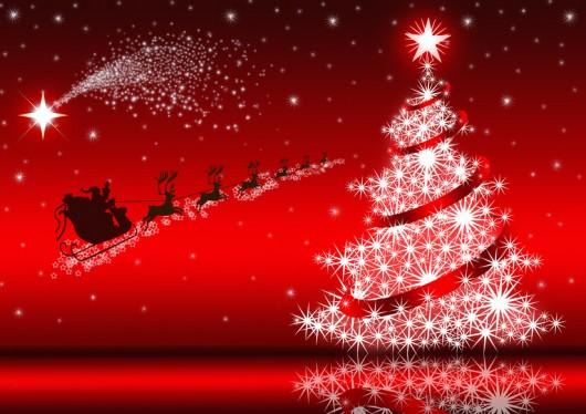 (Italiano) Il Pranzo di Natale