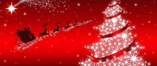 Il Menu di Natale 2014